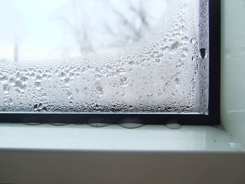 Почему окна «плачут»?
